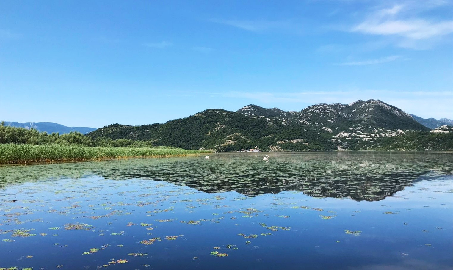Skadar Lake – through the seasons